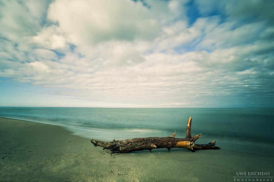 20101030091025_driftwood3.jpg